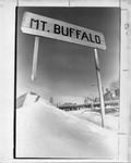 Mt. Buffalo sign with city skyline in backdrop by The Buffalo Courier-Express Newspaper