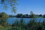 The lake in South Park with wild island in the distance. Photograph by F. Kowsky, 1991.
