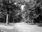 North Meadow Drive in Delaware Park, c. 1910.