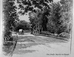 """Charles Sumner, """"North meadow Drive, Delaware Park,"""" 1886. From Sumner's <i>Inklings of Buffalo</i>."""