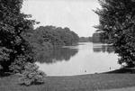 Delaware Park Lake. Photograph by Detroit Publishing Company, c. 1900.