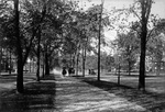 Lincoln Parkway. Anonymous photograph, c. 1910.