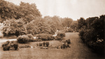 Delaware Park, quarry garden (destroyed), c. 1900.