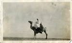 Israel; Bay of Acre; 1926; Man on Camel; Photograph by Harry W. Rockwell
