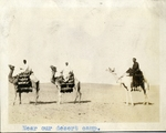 Egypt; Giza; 1926; Men on Camels; Photograph by Harry W. Rockwell
