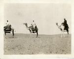 Egypt; Giza; 1926; Men on Camels; Photograph
