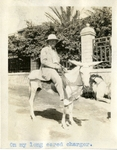 Egypt; Giza; 1926; Dr. Harry W. Rockwell and Donkey; Photograph