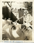 Egypt; Giza; 1926; Close-Up of Rameses; Photograph by Harry W. Rockwell