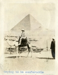 Egypt; Giza; 1926; Man on Camel; Photograph by Harry W. Rockwell