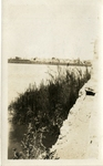 Middle East; 1926; Water and Flora; Photograph by Harry W. Rockwell