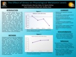 The Effect of Physiological Stress on Melatonin Levels
