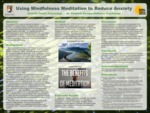 Mindfulness Meditation as a Stress and Anxiety Reduction Technique for College Students