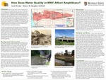 How Does Water Quality in Western New York Affect Amphibians? by Jacob Warden