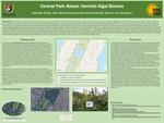 Central Park: Harmful Algal Blooms by Nathalie Rivas