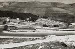 Seven Sisters Road to Jerusalem