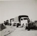 Polish Army Convoy in Palestine
