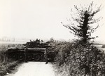 Polish 1st Armored Division Tank Behind a Hedge in France After Normandy Invasion